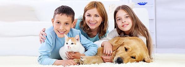 kedi köpek korkusu, hayvanlardan korkma