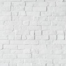 ladrillo blanco bruto