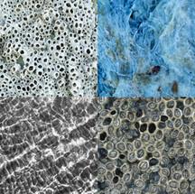 texturas chilotas