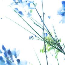 fragmentos azules