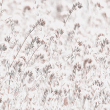 flores cobre