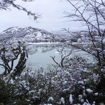 lago Gray