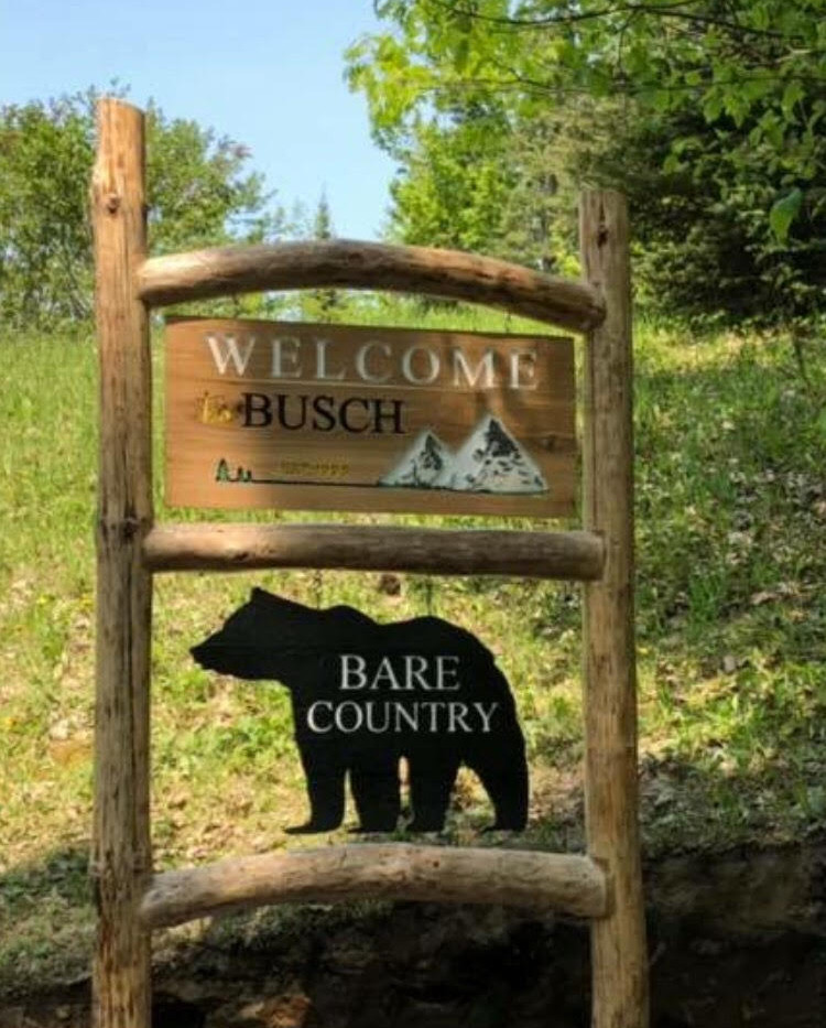 Bare Country.jpg