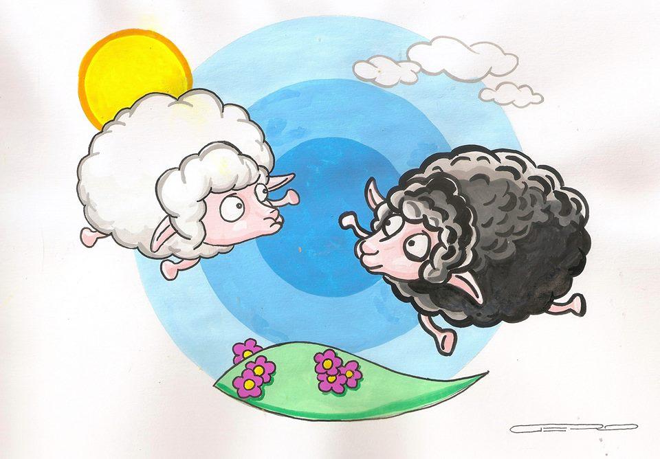 pradaria das ovelhas se encontrando