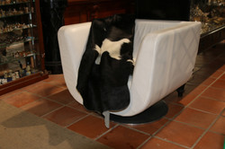 USA White Leather chair