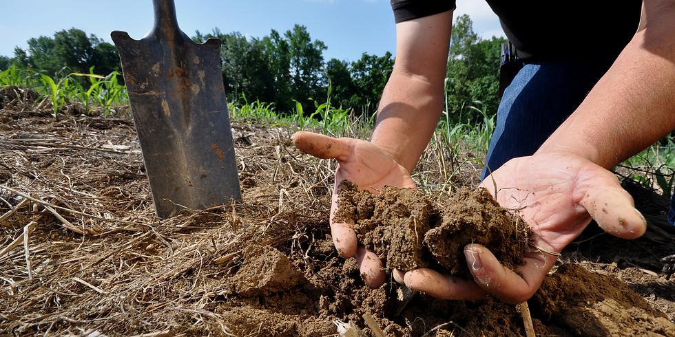 The Dirt on Soil Health