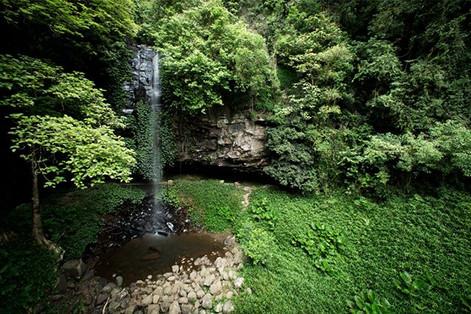 #crystalfalls #dorrigonationalpark