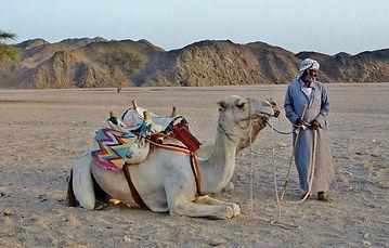 beduiny.jpg