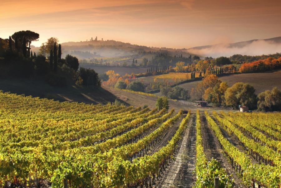 тосканские холмы