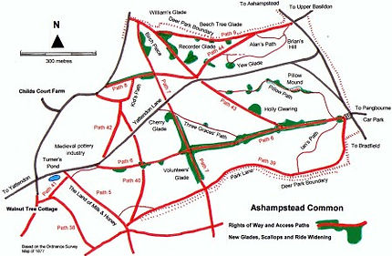 map-of-ashampstead-common.jpg
