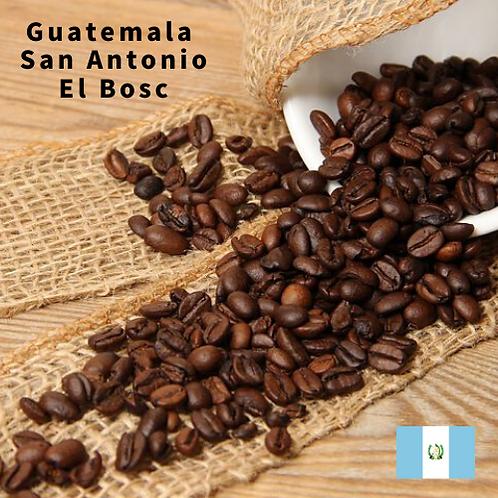 国際品評会授賞 COE Guatemala San Antonio El Bosc グアテマラサンアントニオエルボスク(ドリップパック5個セット)