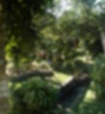 Pasto y selva.jpg Jacuzzi to Casa copy.j
