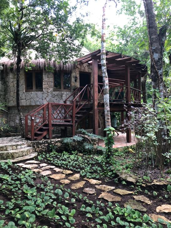 Treehouse Path.jpg