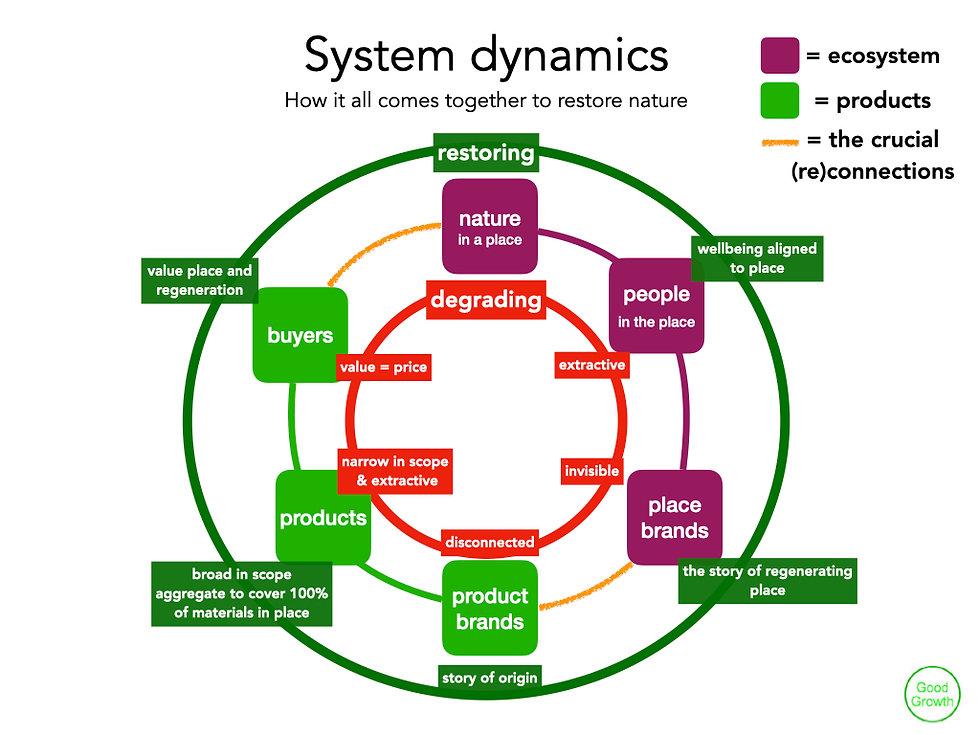 System dynamics.001.jpeg