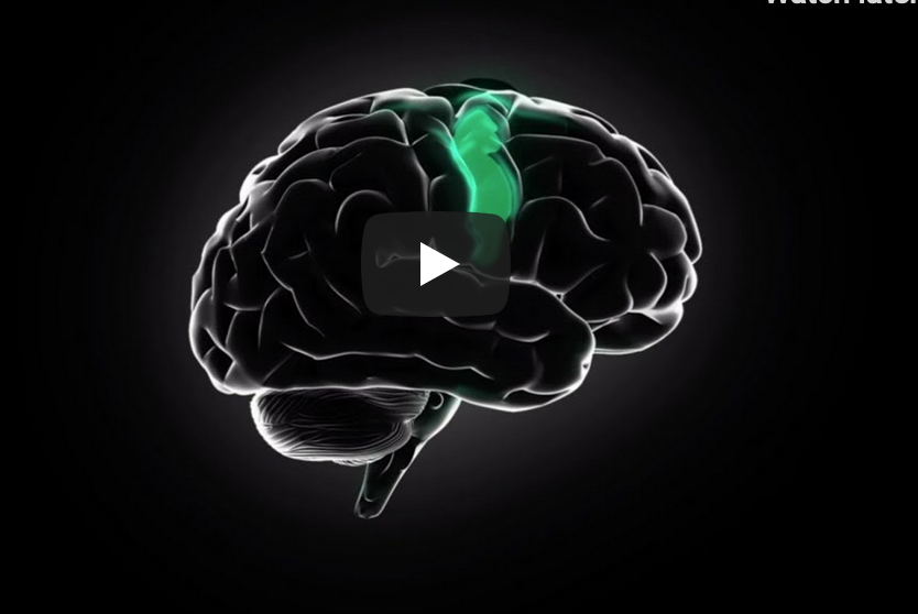 Neuro-Sports Perfomance : Level 1
