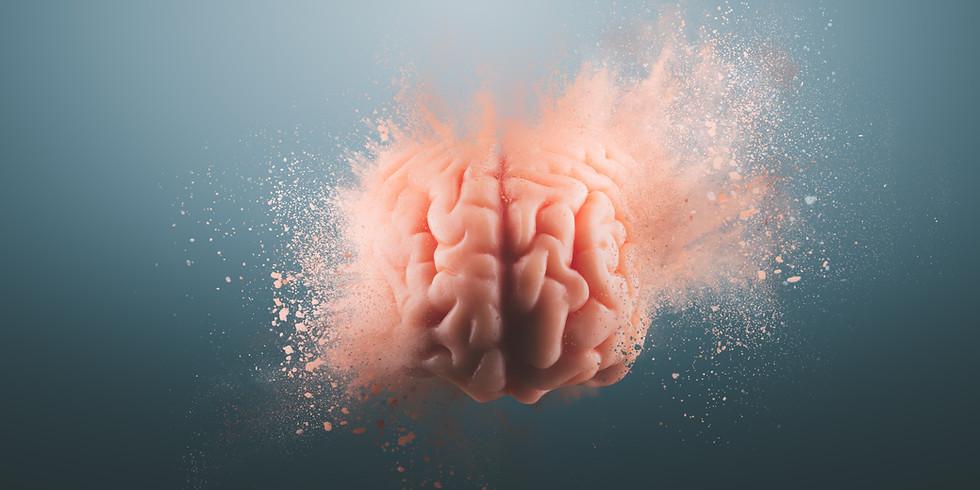 Concussion Protocols & Return to Play