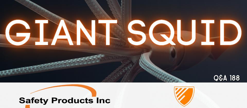 Q188 - Giant Squid
