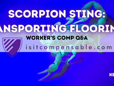Scorpion Sting: Transporting Flooring