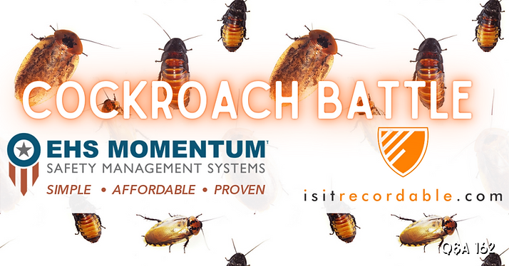 Cockroach Battle