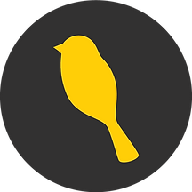 YellowBird logo.png