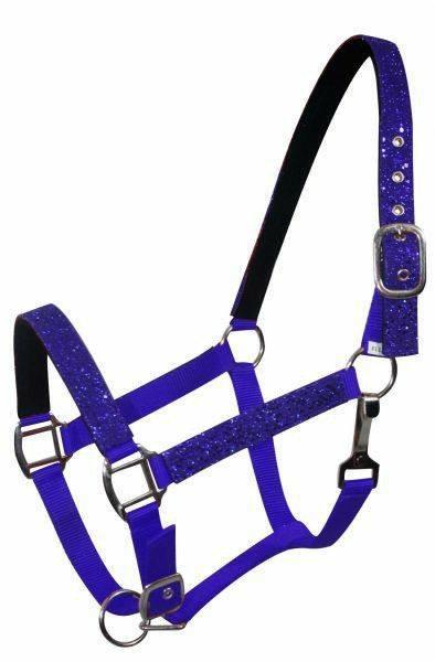 Blue pony halter (6552P)