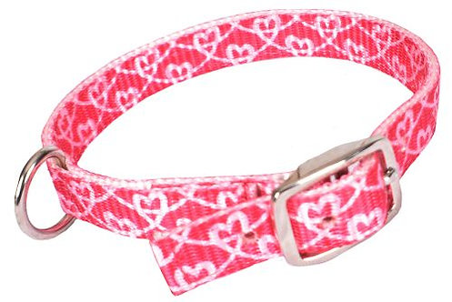 Dog collar (NC-7)