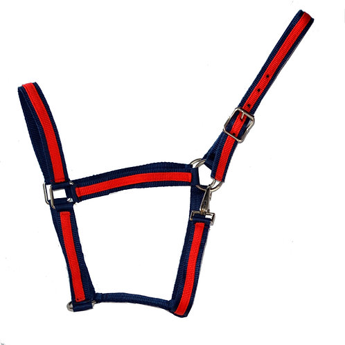 Licou rouge et bleu / Red and blue halter (5010)