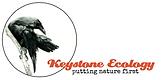 Keystone Ecology Logo