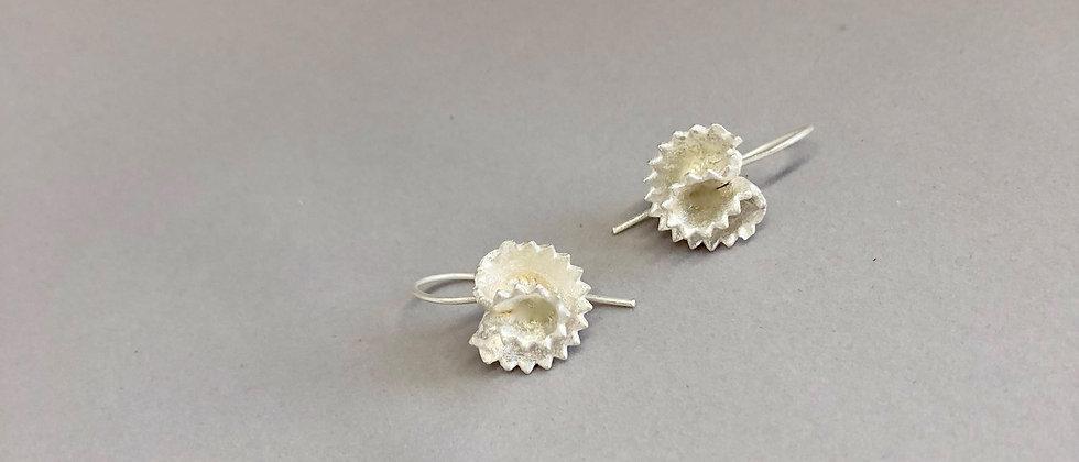 Pasta Orelhas Silver Earrings