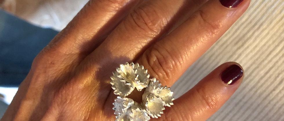 Pasta Orelhas Silver Ring