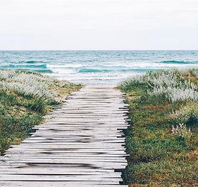 素朴なビーチのパス