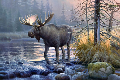 Moose Background (2020_04_14 12_03_32 UT