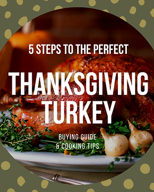 Turkey Guide.png