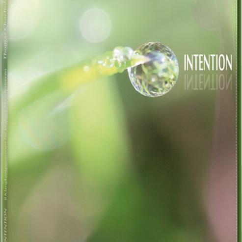 CD INTENTION