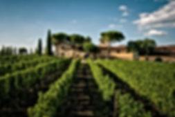 winery visit.jpg