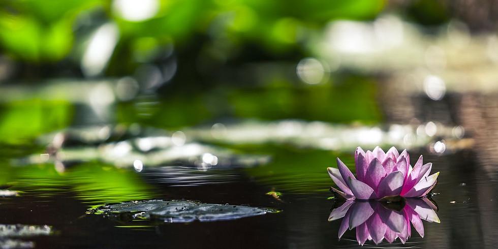 Restorative Yoga & Sound Relaxation