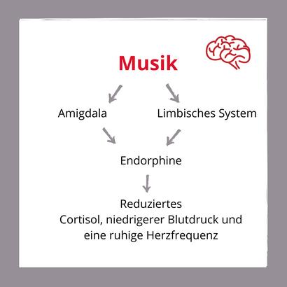Prhysische Wirkung der Musik