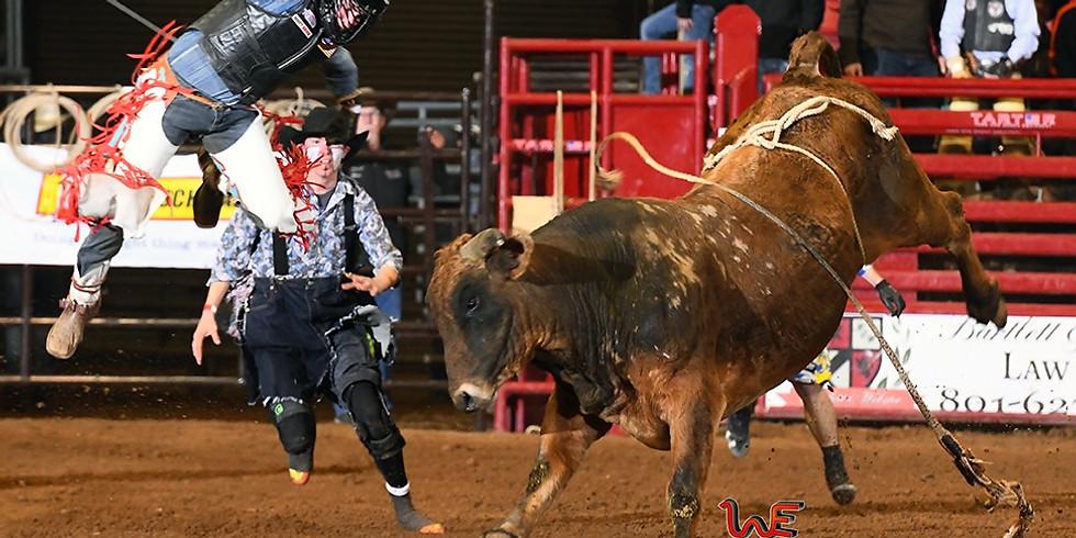 Bull Wars