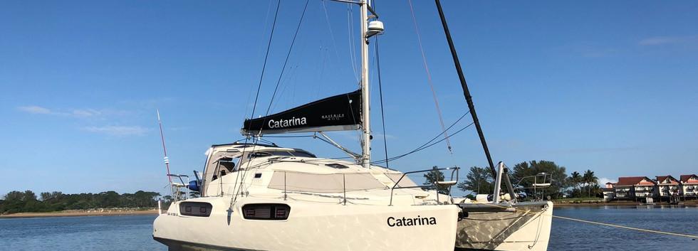 Catarina drying out.jpeg