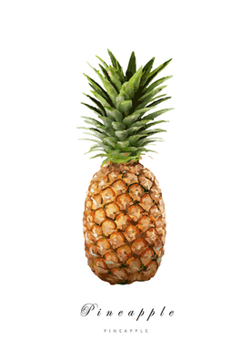 Pineapple 05 - Posterperfect.png