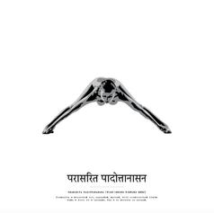 Poster 50x50 - Prasarita Padottanasana.p