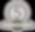 SYNA - medalj_klass_5.png