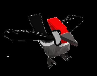 woodpecker1.png