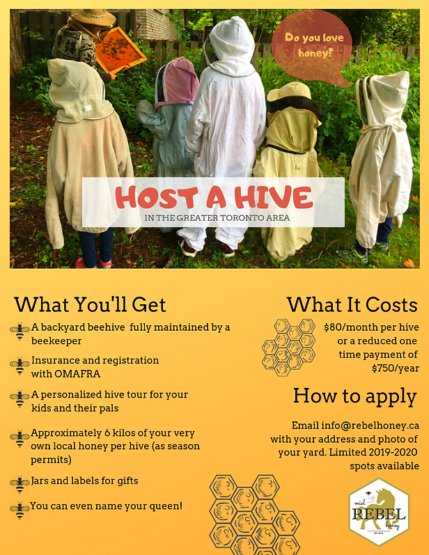 hive_host_flyer_gta.png