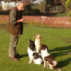 Charlie Mackender with his three gun dogs
