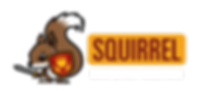 squirrel-compliancy-solutions-logo-horiz