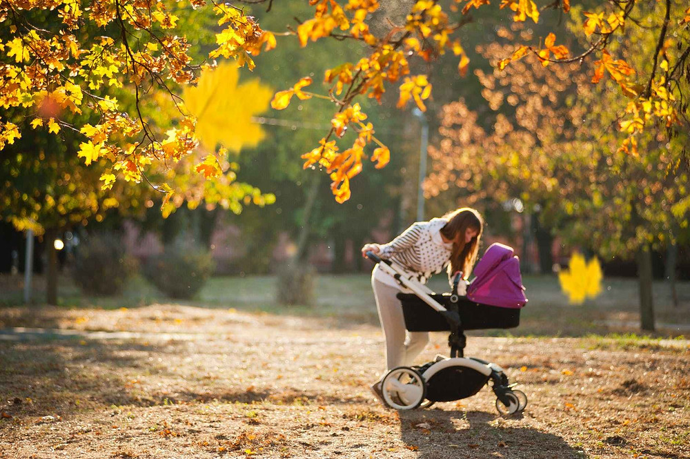 woman in grey pants holding black and purple stroller