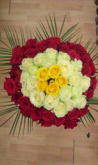 FB_IMG_1583656621895.jpg