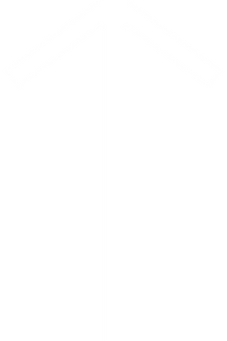 white Runic_letter_tiwaz.png