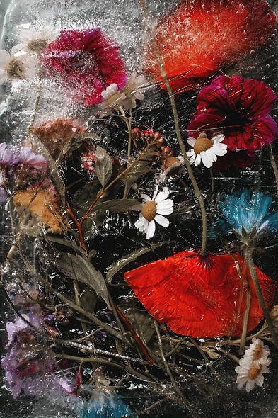 FlowersxSaschaEngel5.jpg